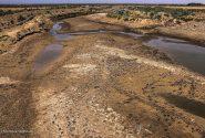 پشت پرده خشک شدن هورالعظیم؛ خشکسالی یا تصمیمات اشتباه؟!